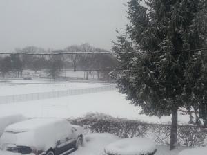 Snow 2-3-14